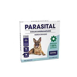 zotal-parasital antiparasitario necklace of 75cm for large dogs Zotal–Parasital antiparasitario Necklace of 75cm for Large Dogs 417q2towDUL