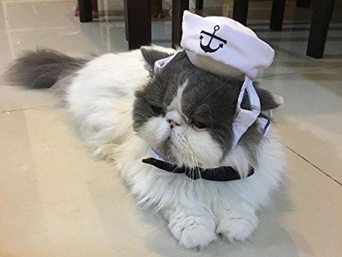 Namsan Katze Hund Sailor Kostuem Hut Marine (Outfit Sailor)