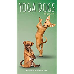 Yoga Dogs Together 2019-2020 Monthly Planner