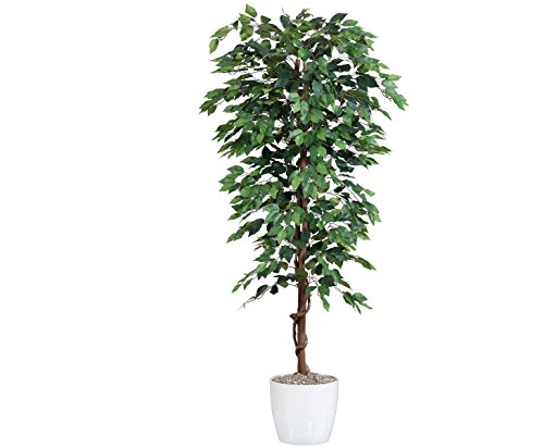 Kunstbaum 200cm Ficus Benjamini grün mit 2064 Blätter aus Textilfaser Material - 2