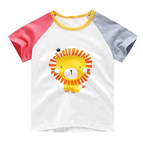 Dtuta Haut De Sport GarçOn Tops GarçOn Moulant Col Rond à Manches Courtes T-Shirt Imprimé De Dinosaures avec des Lions d'animaux à Manches Courtes, éLastique Et Ample