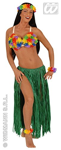 Hawaiano Kostüm - WIDMANN Hawai BH für Adulti, mehrfarbig, One Size, 2456R