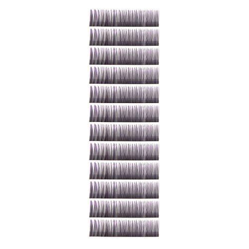 0.10 C-boucle Deux Tons Plateau de Faux Cils Extensions de Cils - 12mm , Pointe Violette