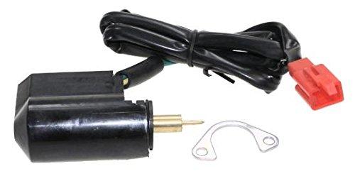 E-Choke, Kaltstarter 7mm Zylinderstift mit Sicherungsblech für 4 Takt Roller Rex Aprilia Yamaha Peugeot, CPI,