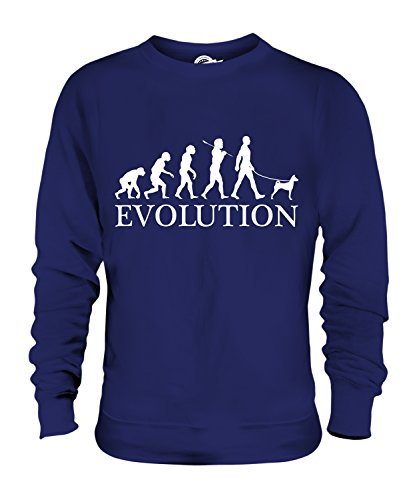basenji-evolution-of-man-unisex-sweater-jumper-mens-womens-ladies-size-3x-large-colour-blueberry-bea