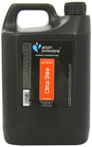 sposo professionale Citrus brillare shampoo, 4litri