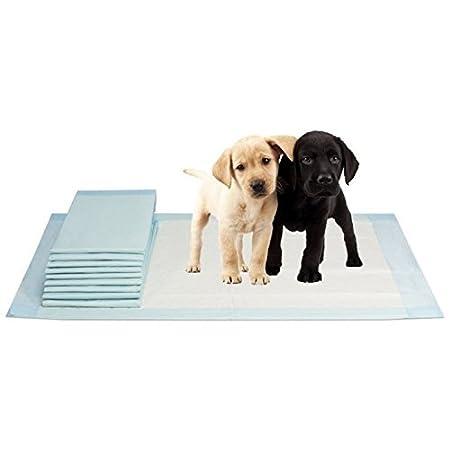 Vidima Hygiene Unterlagen Puppy Pads Größe 40 x 60 cm | 100 Stück | 12 lagige Welpenunterlage | für Haustiere | ideal…