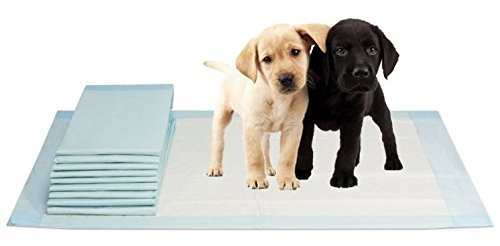 VIDIMA Puppy-Pads in der Größe 40x60 cm | 100 Stück | mehrlagige Welpenunterlage für Tiere bei Inkontinenz | ideal als Trainingsunterlage bei Hunde-Training | saugstarke & rutschfeste Unterseite (Hund-pad-training)