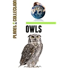 Owls: Picture Book (Educational Children's Books Collection) - Level 2 (Planet Collection 164) (English Edition)
