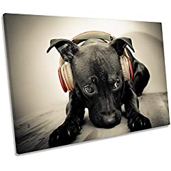 Canvas Geeks Pyramid International - Póster de Staffy Bull Terrier (Lienzo), Color Negro, 120cm Wide x 80cm High