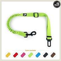Pets&Partner Hunde Autogurt/Sicherheitsgurt in verschiedenen Farben passend zu Halsband und Geschirr, Grün