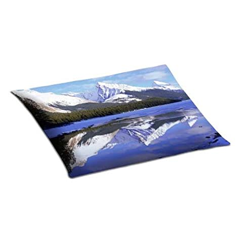 Stain Resistant Zippered Bedroom Pillow Covers Case Pillowcover Removable Cotton And Polyester 20x30 Inch