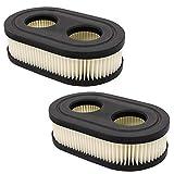 Yangtek Luftfilter mit Zündkerze für Rasenmäher Motoren für Briggs & Stratton Motoren 550E 550EX Eco-Plus 575EX Series 4247 5432 5432K Motor Rasenmäher Ersetzt 798339 798452 593260 (2)