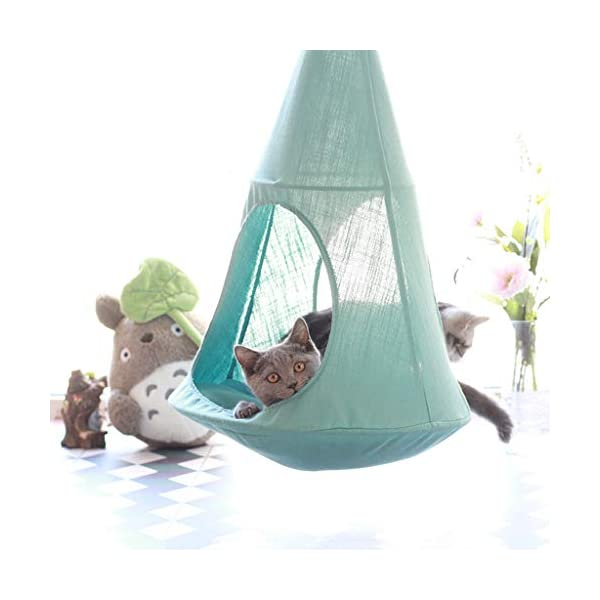 Cat Hammock, Window Sill Hanging Cat Bed Pet Cat Nest, Pet Hammock Hanging Seat, Save Space, Suitable for Household Detachable and Washable,B SJY Durable and Comfortable - According to the cat's favorite, our cat hammock is made of safe, non-toxic, scratch-resistant, bite and elastic materials. It won't hurt your cat, it suits all seasons, providing comfort and safety for your cat to sleep in the warm sun. Intimate Design - The cat hammock gives your cat a high position. Sleep leisurely on top, enjoy the sun, the weather and the natural landscape, a wonderful day! Even in winter, the warm bed will be perfect. Space Saving - The cat hammock provides a safe and comfortable sun hammock seat for your cat. Your cat can jump into this rest seat. The cat bed remains stable, which will save you the position and provide your cat with a safe and comfortable hammock . 3