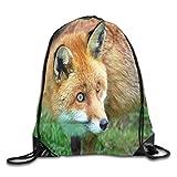 Hicyyu Drawstring Backpack Gym Bag Travel Backpack Red Fox Small Drawstring Backpacks Women Men Adults