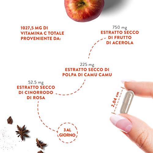 Zoom IMG-2 vitamina c naturale oltre 1000