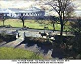 Consider the Lilies: Scottish Painting 1910-1980 from the Collection of the City of Dundee