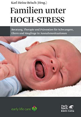 Familien unter Hoch-Stress: Beratung, Therapie und Prävention für Schwangere, Eltern und Säuglinge in Ausnahmesituationen
