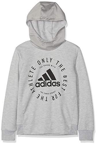 adidas Jungen YB SID PO Sweatshirt, Mehrfarbig (brgrin/Negro), 164
