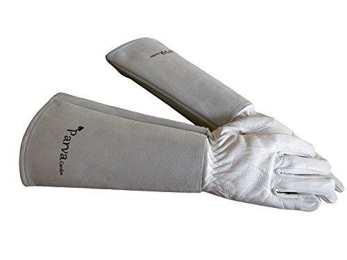 THORN Proof Handschuhe für Beschneiden Rose Garden, kaktus und Prickly Pflanzen. Leder Handschuhe mit Canvas Gauntlet, Damen und Herren Gartenhandschuhe, PG51234, gelb, Large Neutral (Thorn Proof-garten-handschuhe)