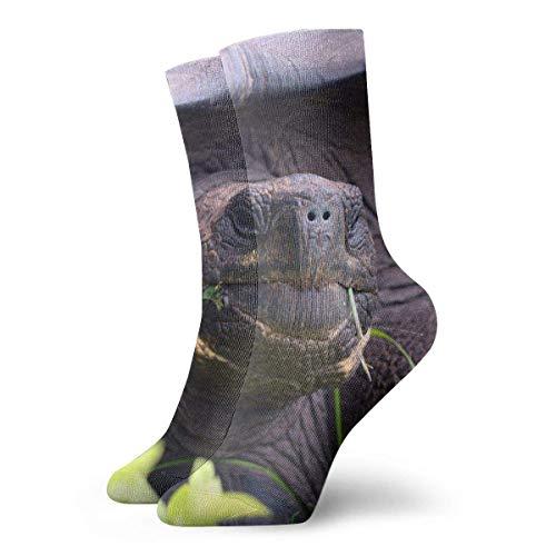 Xdevrbk Eastern Tortoise Casual Crew Socks,Thin Socks Short Ankle for Outdoor,Running,Athletic,Travel