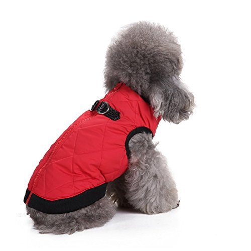 systond Pet Winter Kleidung Hund Jacke Haustier Hund Weste Wintermantel für (Verbinden Sie Kostüm Vier)
