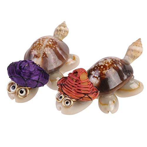 rosenice Seashell Crafts Schildkröte Maskottchen Mini Brillen Schildkröte Deko (unterschiedliche Farbe) (Handwerk Seashell Projekte)