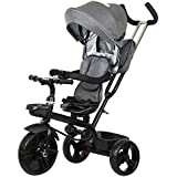Little Olive Roller Coaster Baby Tricycle With Canopy And Push Handle (Grey)