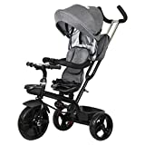#8: Little Olive Roller Coaster Baby Tricycle with Canopy and Push Handle (Grey)