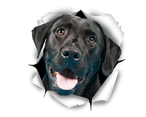 Winston & Bear Perro 3D pegatinas lindo Labrador negro - 2 Pack - pegatinas para pared, pegatinas de Labrador negro de nevera
