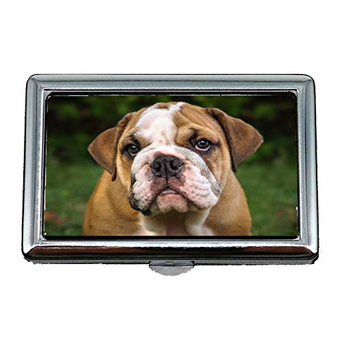 Englisch Bulldogge Hund Säugetier Cute Portrait Puppy, Visitenkartenetui Visitenkartenetui Edelstahl ()