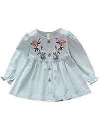 Hongyuangl Baby Mädchen Langarm Shirts Bestickt Mini Kleider Rüschen Bluse für Frühlings Herbst