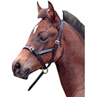 Cottage Craft - Cabezada slip de piel TEX para caballo