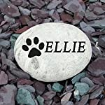 Signs & Numbers Pet Memorial Pebble SMALL 4