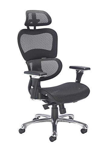 Office Hippo Executive High Back Office Chair with 2D Adjustable Arms, Adjustable Headrest, Mesh, Black