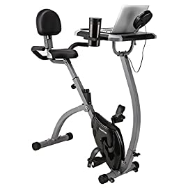 Finether Cyclette Magnetica Pieghevole con Schienale e Scrivania per Laptop Bici da Allenamento con Monitor LCD, Grigio