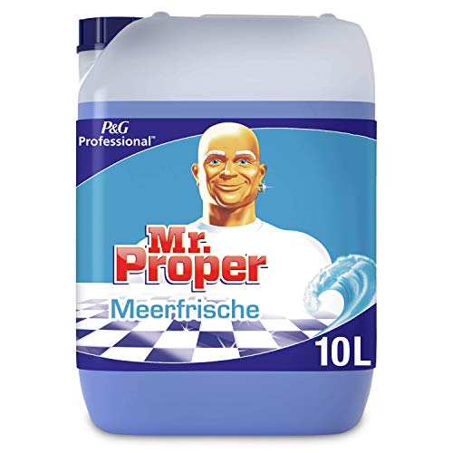 Meister Proper Professional Meeresfrische Allzweckreiniger, 10 L
