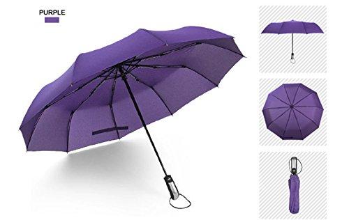 Ombrello da viaggio mini compatto, pieghevole, automatic, antivento testato 55 MPH by Wnnideo
