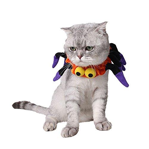 Disfraz de perro pequeño gato con forma de araña para disfraz de Halloween, festival, vestido para cachorros de gatos pequeños