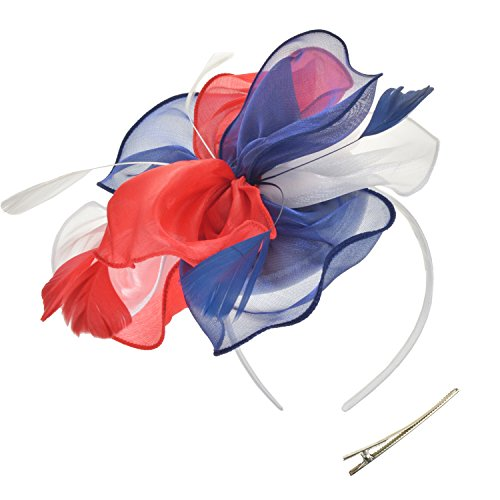 (DRESHOW Fascinators Hut Cocktail Party Tee Kopfbedeckung Blume Mesh Organza Bänder Federn auf einem Stirnband und Gabel Clip für Mädchen und Damen)