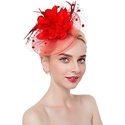 dressfan Elegant Circular Mesh Net Flower Pluma Fascinator Pinza de pelo Sombrero Banquete Wedding Barrettes