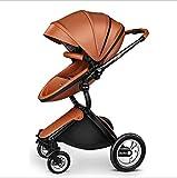 QZX 2 in 1 Kinderwagen Reisesystem Kompakte Einhandfalte mit feststellbaren Rädern und geräumigem 5-Punkt-Sicherheitssystem, Leichtgewichtler,Brown