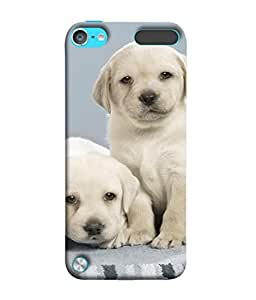 Fuson Designer Back Case Cover for Apple iPod Touch 5 :: Apple iPod 5 (5th Generation) (Girl Friend Boy Friend Mother Father Daughter Sister Wife Life Partner )