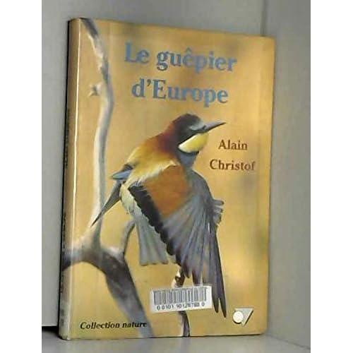 Guepier d'europe                                                                              070996