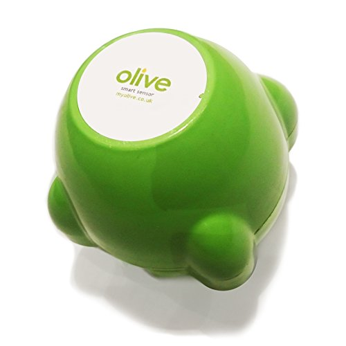Olive  Heating Oil Smart Sensor Kit