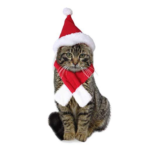 Petchute costume natalizio per gatto e cucciolo cappello natalizio sciarpa per gatti, vestito da babbo natale