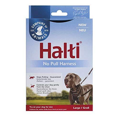 The Company of Animals Halti Hundegeschirr, Large, schwarz