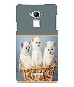 printtech Cute Kittens in Basket Back Case Cover for COOLPAD NOTE 3 / COOLPAD NOTE 3 PLUS