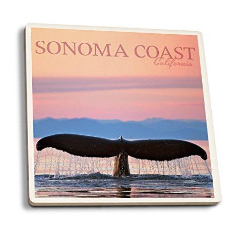 Sonoma Coast, Kalifornien-Buckelwal, keramik, mehrfarbig, 4 Coaster Set Sonoma-bar Set