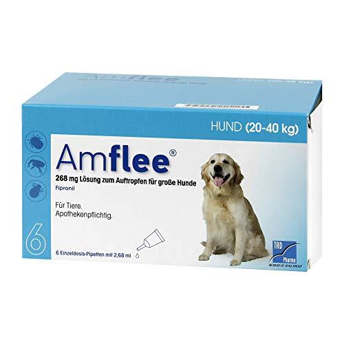 Amflee 268 mg Lösung zum Auftropfen für Große Hunde, 6 St